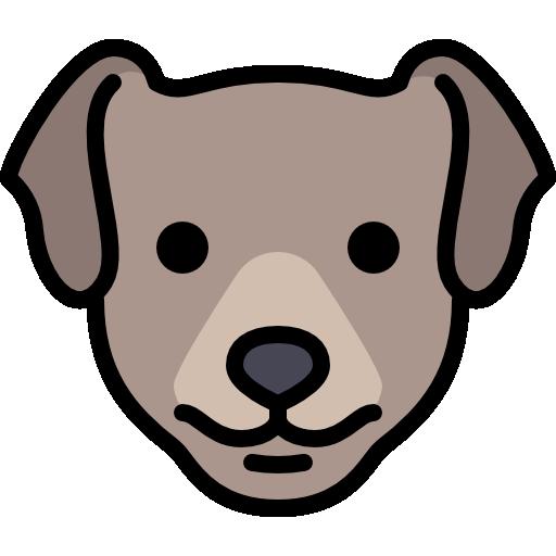 adoptable_dog